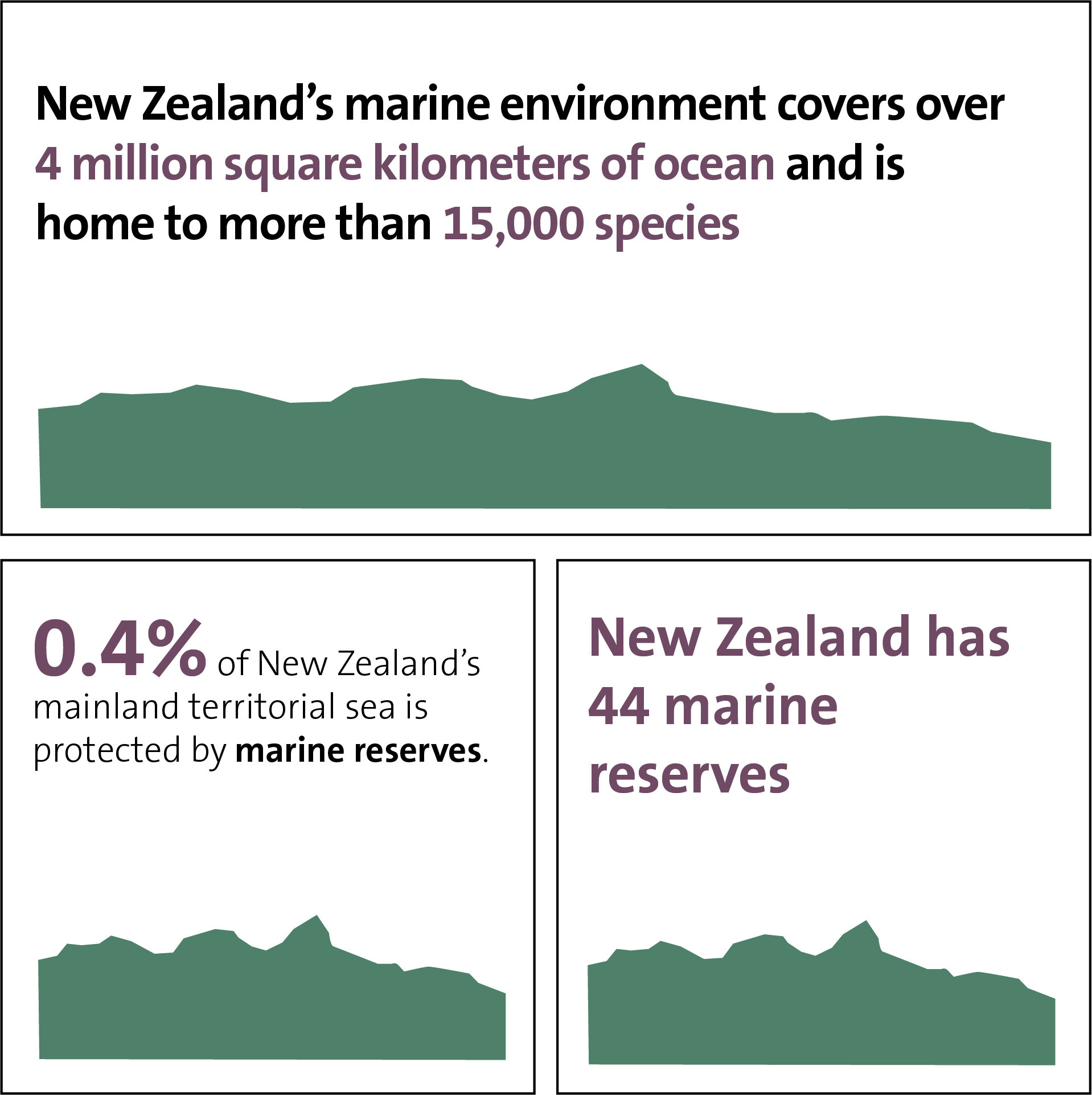 Facts about the marine environment
