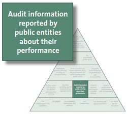 Audit information reported by public entities about their performance