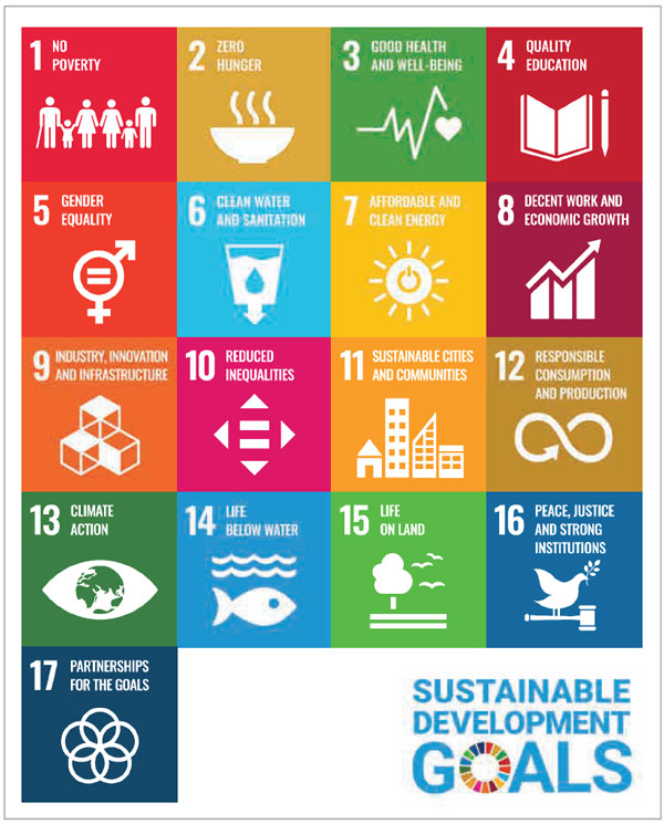 Figure 1 - The United Nations sustainable development goals.