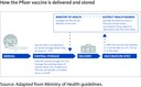 Figure 4 - How the Pfizer vaccine is delivered and stored