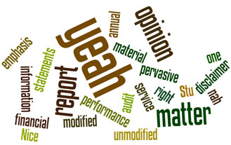 Wordle for the post on the Kiwi guide to audit reports...