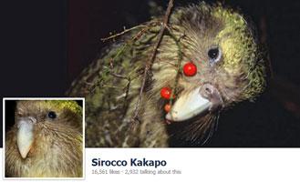 Sirocco on Facebook